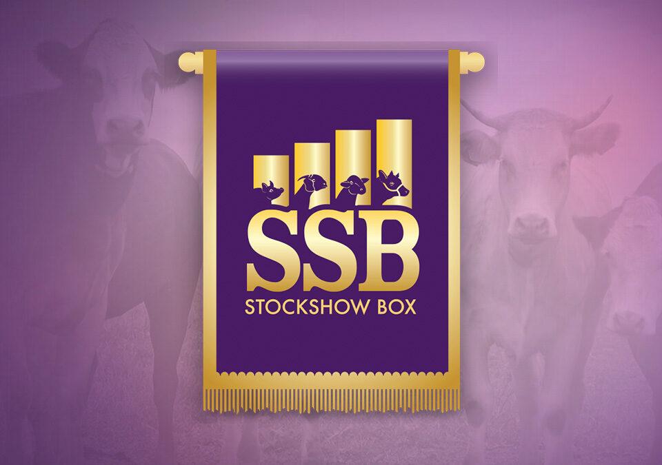 SSB Logo image