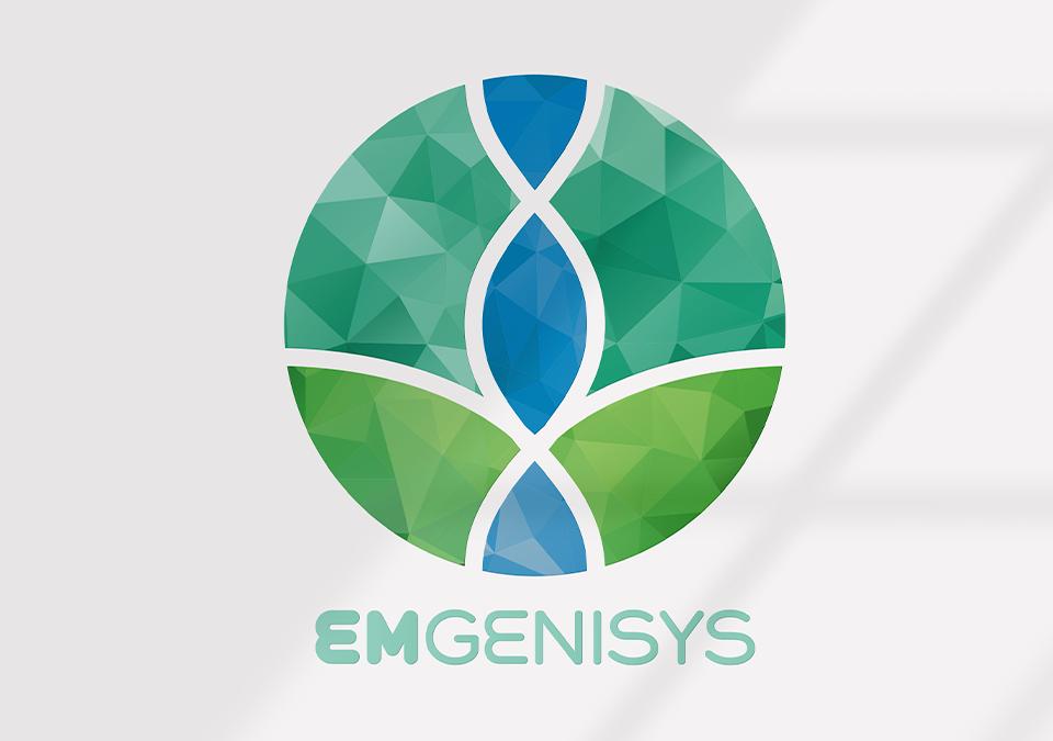 Emgenisys Logo Design Flint Avenue Marketing